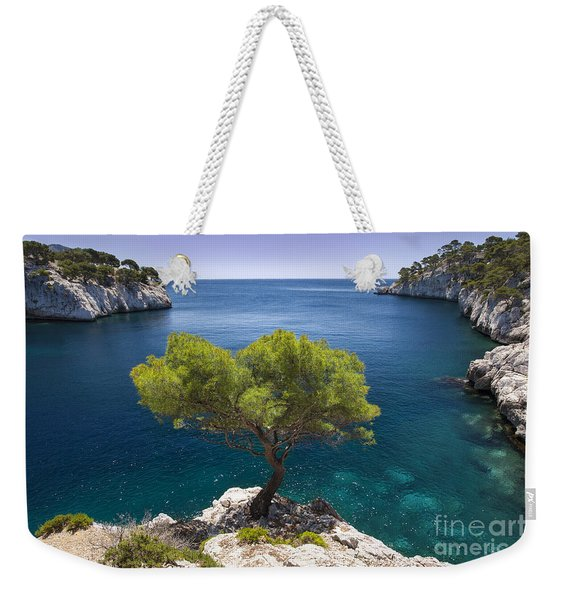 Weekender Tote Bag featuring the photograph Lone Pine Tree by Brian Jannsen