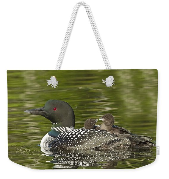Loon Parent With Two Chicks Weekender Tote Bag