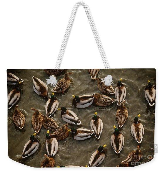 Mallard Ducks Weekender Tote Bag