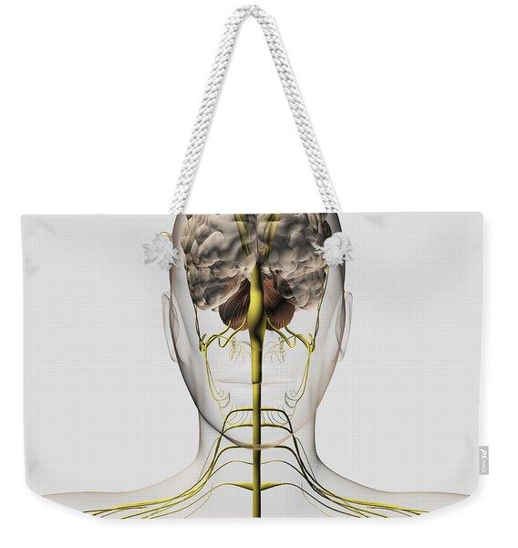 Medical Illustration Of The Human Weekender Tote Bag