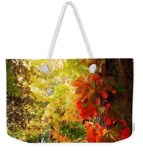 Minnesota Jungle Weekender Tote Bag