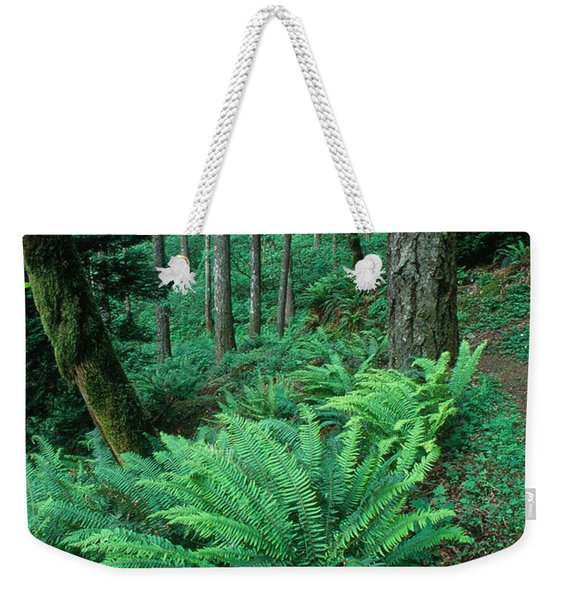 Mount Hood National Forest Weekender Tote Bag