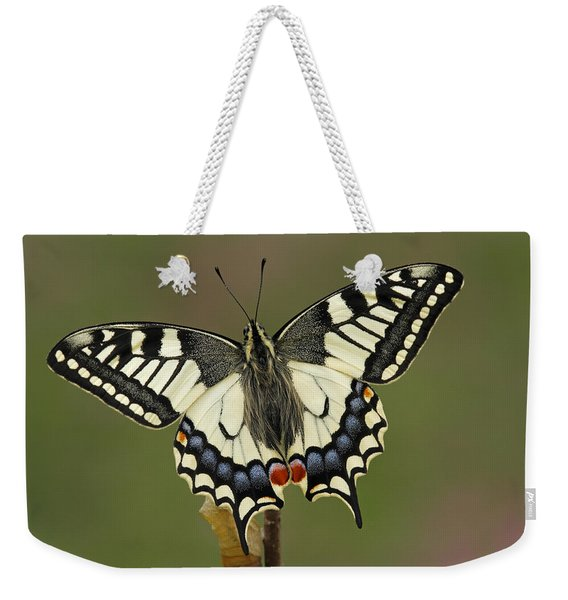 Oldworld Swallowtail Butterfly Weekender Tote Bag