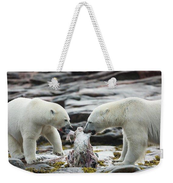 Polar Bears Feeding On Harbour Islands Weekender Tote Bag