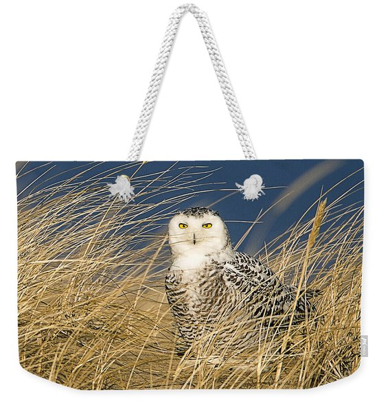 Snowy Owl In The Dunes Weekender Tote Bag