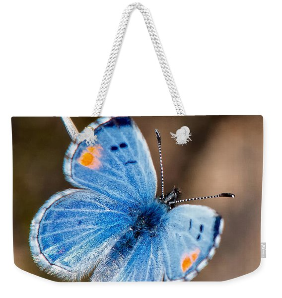Weekender Tote Bag featuring the photograph Sonoran Blue by Jim Thompson