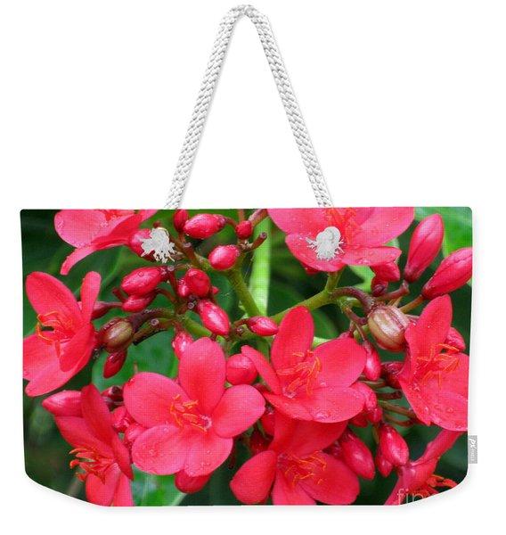Lovely Spring Flowers Weekender Tote Bag
