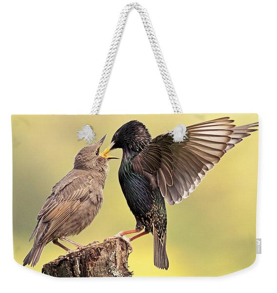 Starlings Weekender Tote Bag