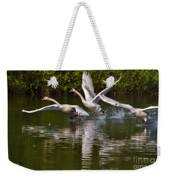 Weekender Tote Bag featuring the photograph Swan Take-off by Jeremy Hayden