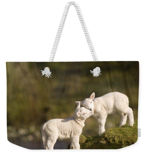Sweet Little Lambs Weekender Tote Bag