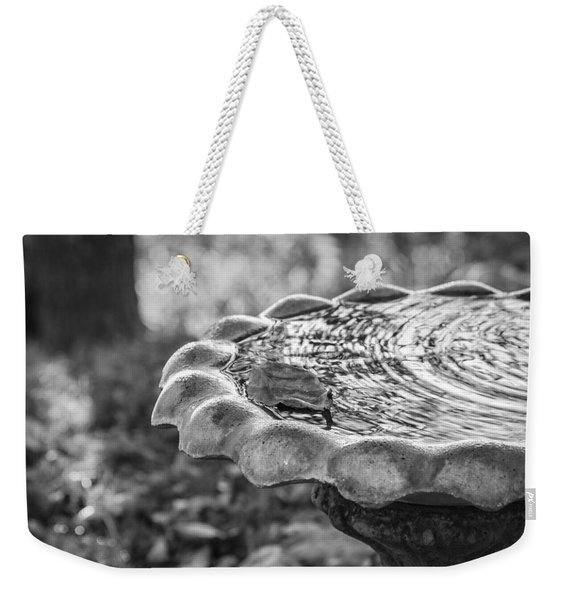 Weekender Tote Bag featuring the photograph Tennessee Birdbath by Carolyn Marshall