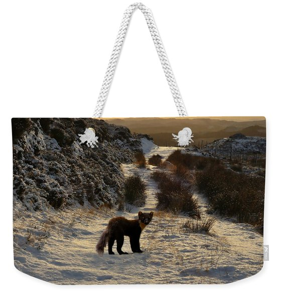 The Pine Marten's Path Weekender Tote Bag