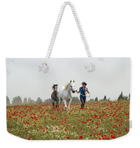 Three At The Poppies' Field... 3 Weekender Tote Bag