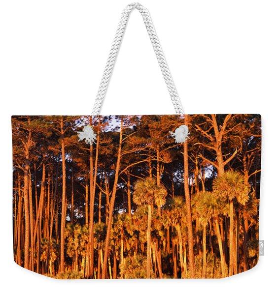 Trees, Hunting Island State Park Weekender Tote Bag