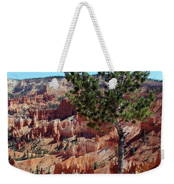 Weekender Tote Bag featuring the photograph Twisted by Jemmy Archer