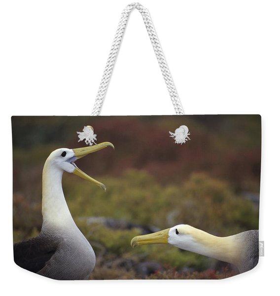Waved Albatross Courtship Display Weekender Tote Bag