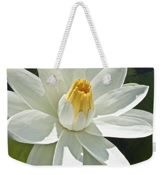 White Water Lily - Nymphaea Weekender Tote Bag