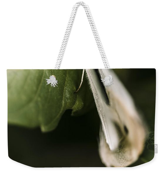 White Winged Moth Insect On A Green Tree Leaf Weekender Tote Bag