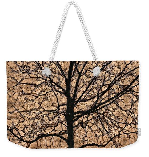 Windowpane Tree In Autumn Weekender Tote Bag