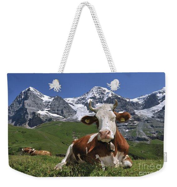 100205p181 Weekender Tote Bag