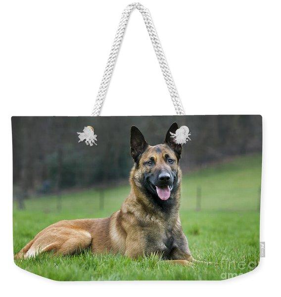 101130p018 Weekender Tote Bag