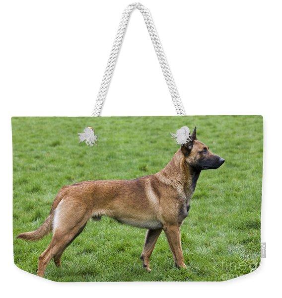 101130p020 Weekender Tote Bag