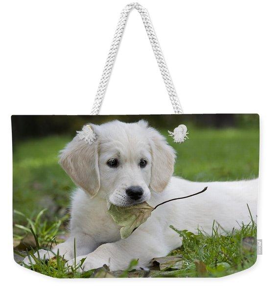 101130p064 Weekender Tote Bag