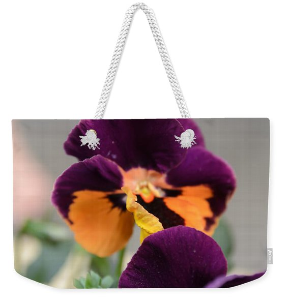 Weekender Tote Bag featuring the photograph Viola Tricolor Heartsease by Michael Goyberg