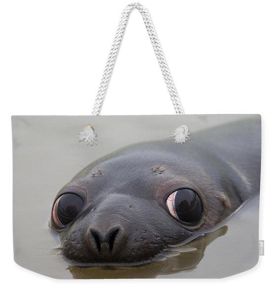 110714p127 Weekender Tote Bag