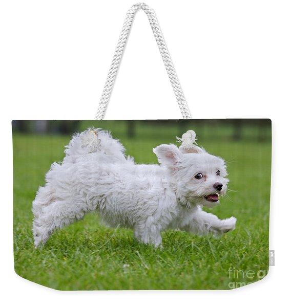 110801p130 Weekender Tote Bag