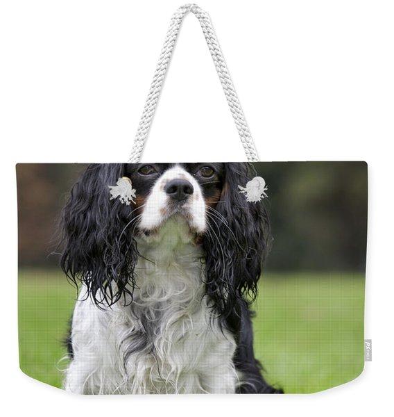 111216p255 Weekender Tote Bag