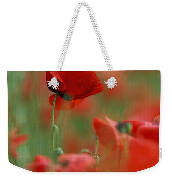 Red Poppy Flowers Weekender Tote Bag