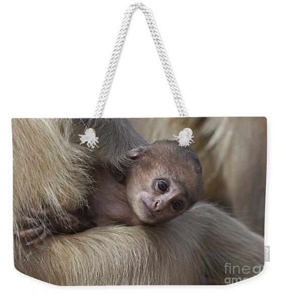 120820p269 Weekender Tote Bag
