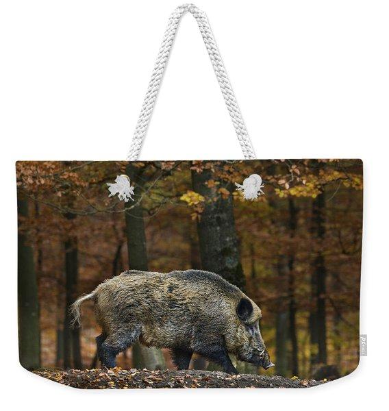121213p284 Weekender Tote Bag