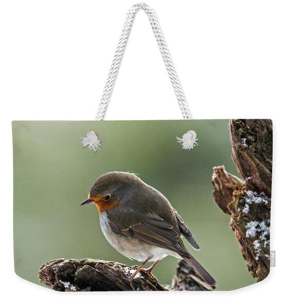 130215p300 Weekender Tote Bag