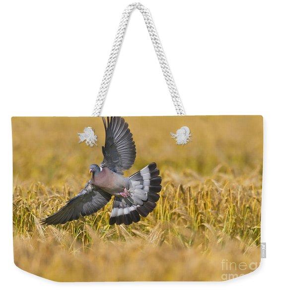 131018p172 Weekender Tote Bag