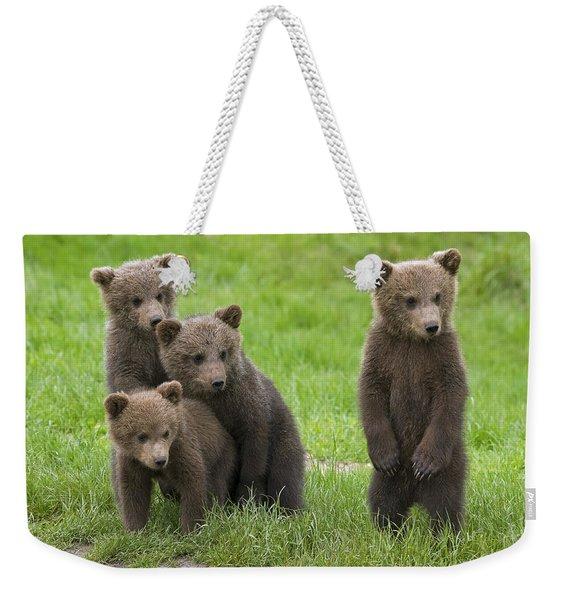 131018p260 Weekender Tote Bag