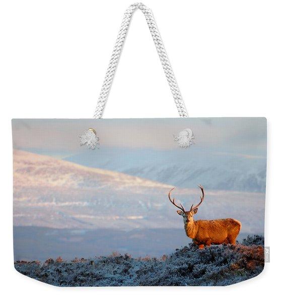 Red Deer Stag Weekender Tote Bag