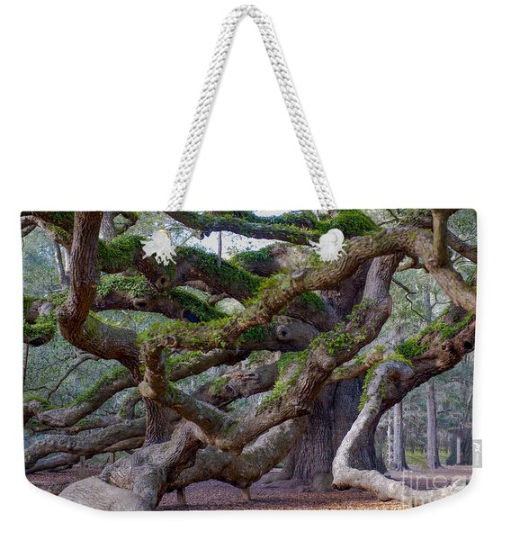 Angel Oak Tree Unique View Weekender Tote Bag