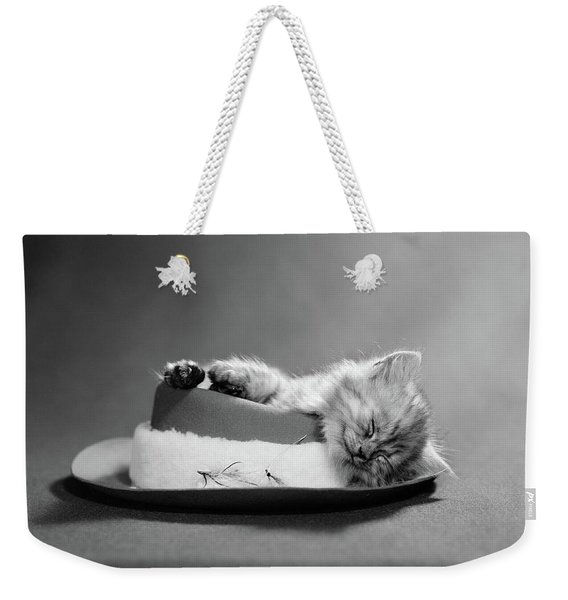1960s Cat Curled Up And Asleep On An Weekender Tote Bag