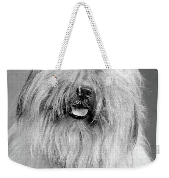 1960s Portrait Of Old English Sheepdog Weekender Tote Bag