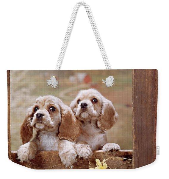 1970s Two Cocker Spaniel Puppies Weekender Tote Bag