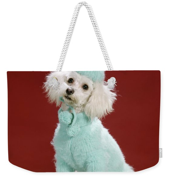 1970s White Poodle Wearing Blue Sweater Weekender Tote Bag