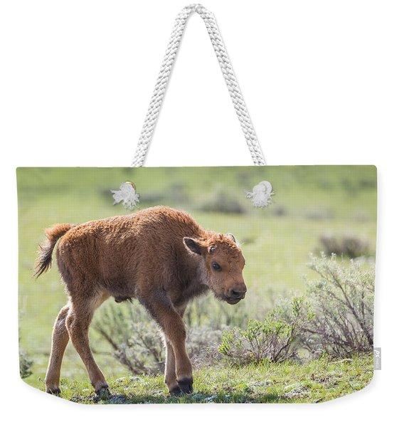 Bison Calf Weekender Tote Bag
