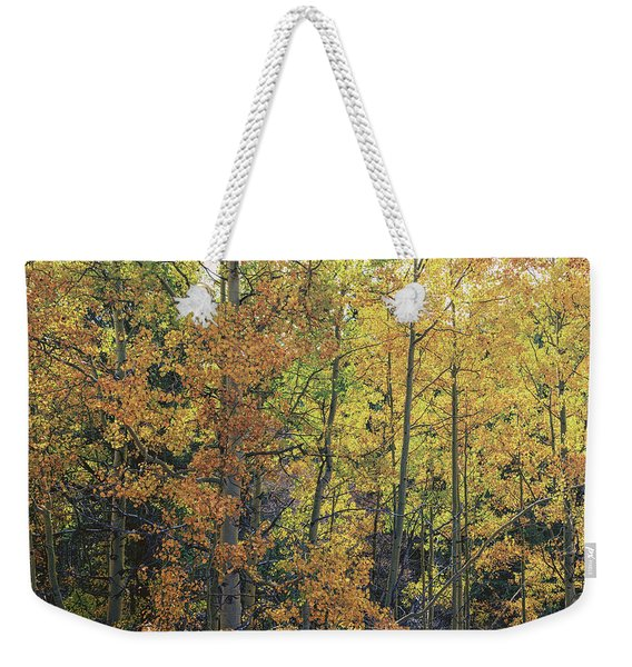 Colorful Changing Aspens - Divide Colorado Weekender Tote Bag