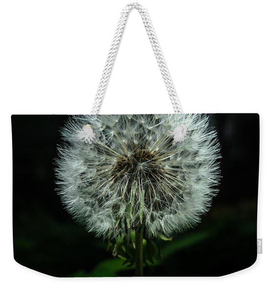 Weekender Tote Bag featuring the photograph Dandelion by Michael Goyberg