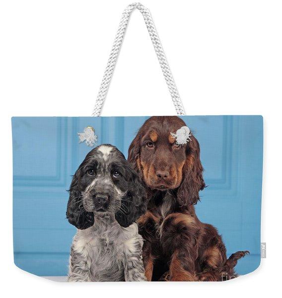 English Cocker Spaniel Puppies Weekender Tote Bag
