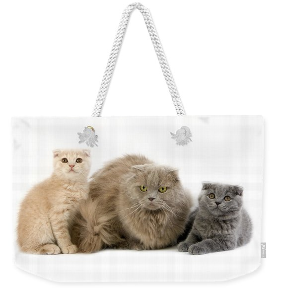 Highland Fold Lilac Self Weekender Tote Bag