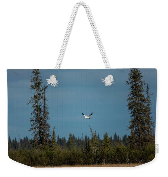 Images From Wood Buffalo National Park Weekender Tote Bag