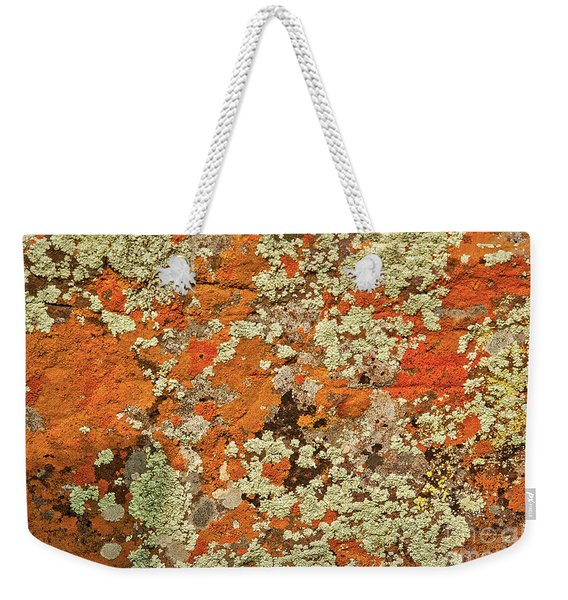 Weekender Tote Bag featuring the photograph Lichen Abstract by Mae Wertz